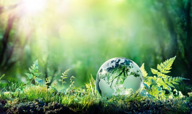 Pourquoi devrions-nous protéger l'environnement?