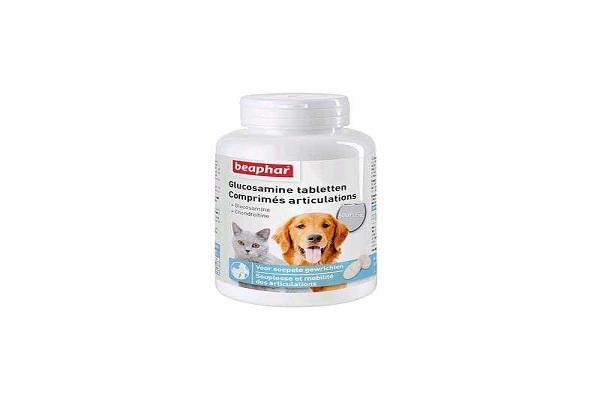 Glucosamine pour les chiens âgés
