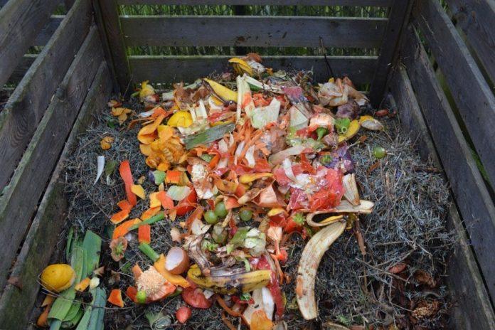 transformer-tous-ces-dechets-en-compost-organique